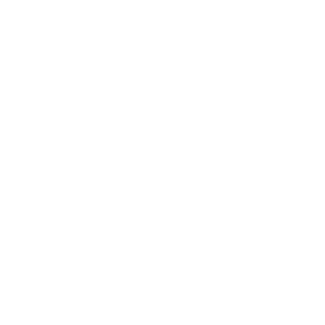 Legend 13